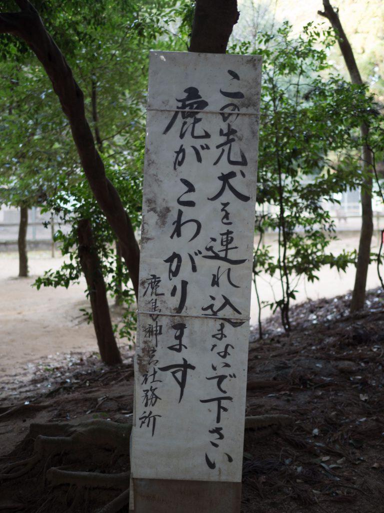 鹿島神宮犬の連れ込み